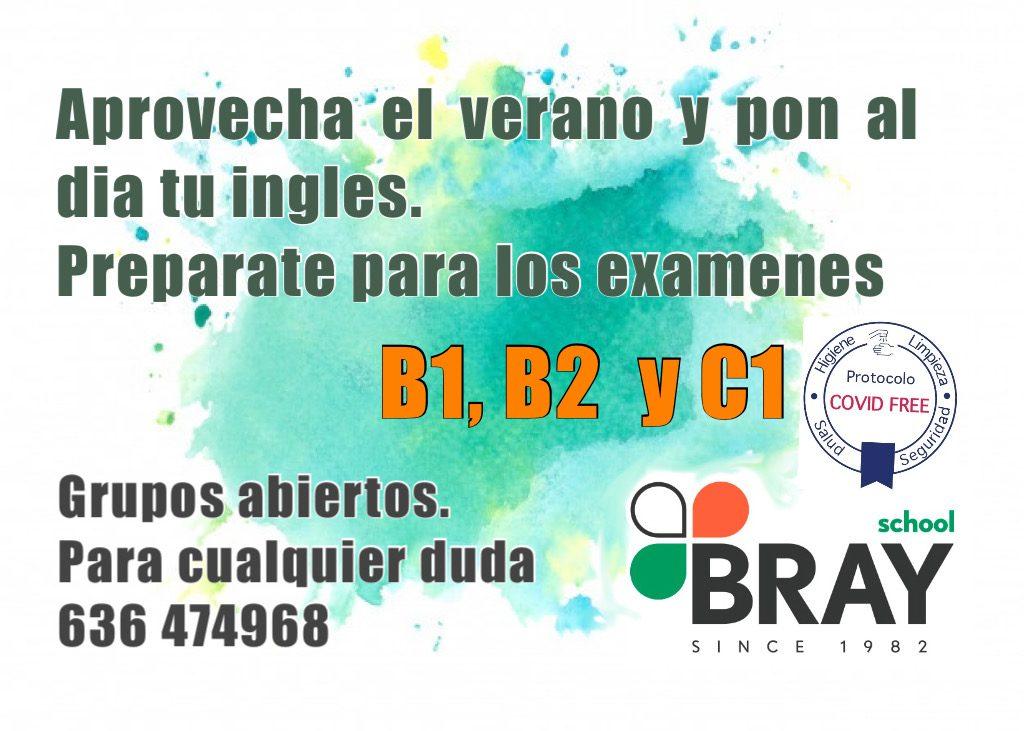 Clases Ingles Verano Bray School